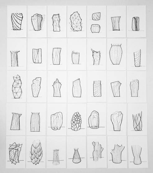 PaulaCermeno_Cactaceae_Shapes